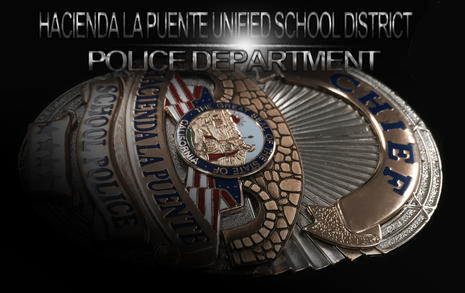 Cheif Badge41WP.jpg